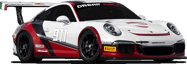 Specialist Cars Ireland - Racing Porsche 911